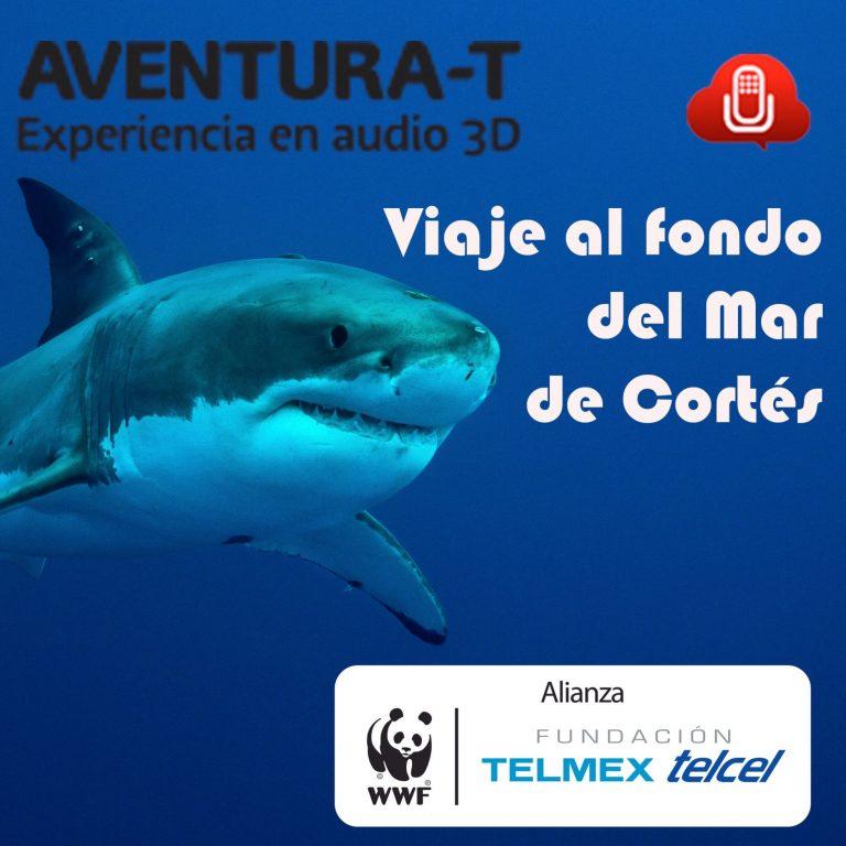 Aventúra-T EP01 Viaje al fondo del Mar de Cortés